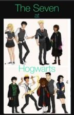 The seven at Hogwarts by alliebelly