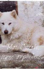Moi, Carole, jeune orpheline. {Stoppé}  by Kathou02