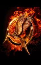 La quatrième expiation des Hunger Games  by arixstxles