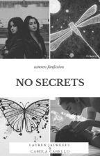 No Secrets (Camren Fanfic) by WeNeedsCamren