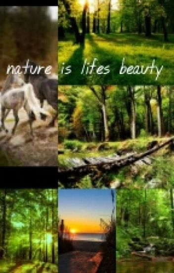 Beautiful Quotes About Life Nature And Other Things Blacklilly