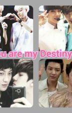You are my Destiny by Kailuhunnie