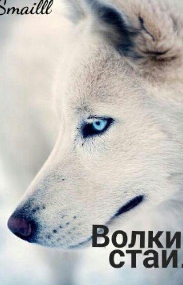 Волки стаи.