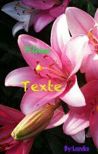 Kleine  Texte by Leevke