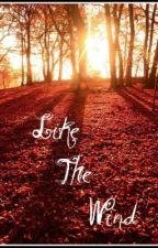 Like The Wind by UnwrittenLovelyxoxo