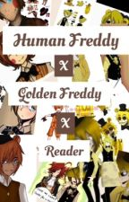 Human Freddy X Golden Freddy X Reader by Grace_is_Not_Normal