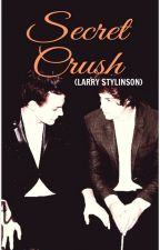 Secret Crush (Larry Stylinson) by 1DerfulFanfics_