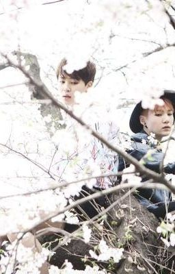 [ShortFic][MinSuga][VKook][BTS] Bạch cốt tinh. Em yêu anh