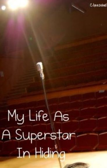 My Life As A Superstar In Hiding