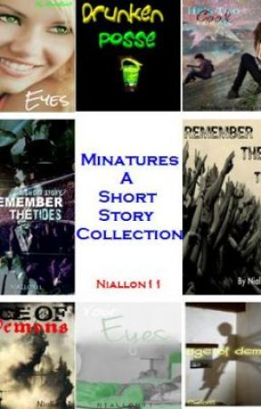 Minatures: A short story collection. by niallon11