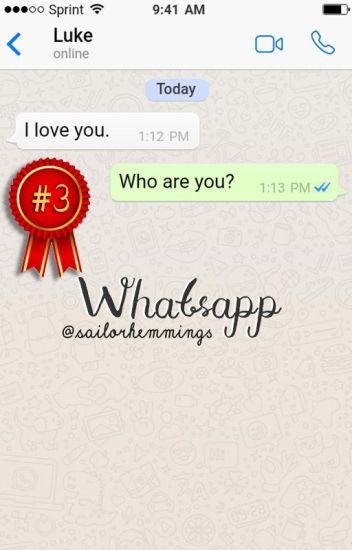 whatsapp ❣ luke hemmings (concluída)