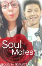 Soul Mates [Sequel to TEXTMATE] [d.e fanfic] by reunite98