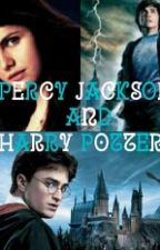 Percy Jackson und Harry Potter by laura_v2