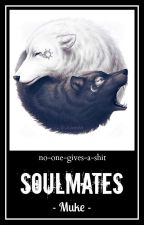 Soulmates // Muke ✓ {+réécriture} by no-one-gives-a-shit