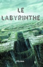 LE LABYRINTHE by Eyllema
