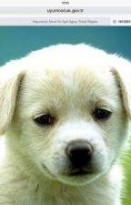 Hayvanlarla İlgili İlginç Bilgiler by Garmedon