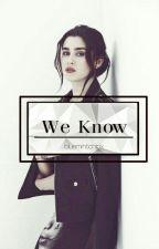 We Know - Lauren Jauregui  [COMPLETED] by bluemintchipx