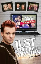 Just for eight months ➙ Larry Stylinson (OS IN FASE DI MODIFICA) by ElenaGrimaldi