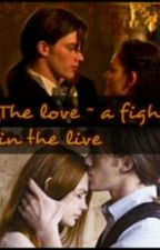 The love ~ a fight in the live by hasi145
