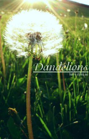 Dandelions by itsdzu