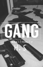 GANG // H.S by smemilyemily