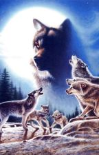 Life Of the Moon Wolves (BOOK ONE OF THE MOON WOVES ) ( Completed ) by TheBlackWerewolf