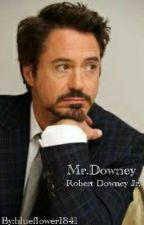 Mr.Downey by reginalovesRobbie