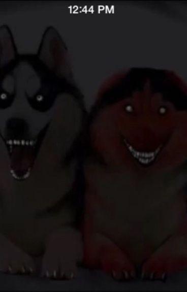 Smile Dod X Male Wolf/Wild Dog Reader