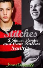 Stitches (a Shawn Mendes and Cameron Dallas  FF) by JennaJacobs88