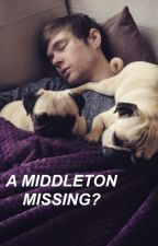 A Middleton Missing? ~A DanTDM Fanfic~ by succulentmulder
