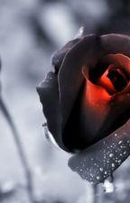 Dead Rose. by Under_Rocking_Paris