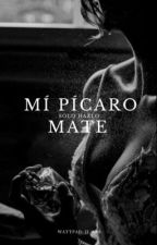Mi pícaro mate. by RhosaH