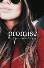 Promise ❋ shawnmendes {COMPLETED} by minedallas