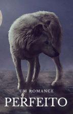 °Um Romance Perfeito°  by letsleka2