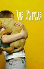 The Puppies That Never Came by Amanda