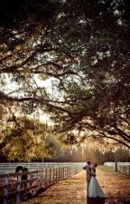 Wittshome Ranch by HorseCrossing