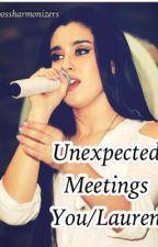 Unexpected Meetings (Lauren/You) by bossharmonizers