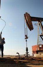 Texas Energy Exploration, LLC by LuisaBanks