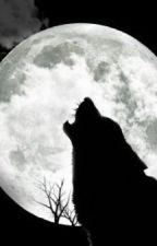 Nightwolf by EdrenaPrice