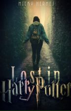 Lost in Harry Potter  by Touchofmystery