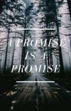 A Promise, Is A Promise by 13rw__