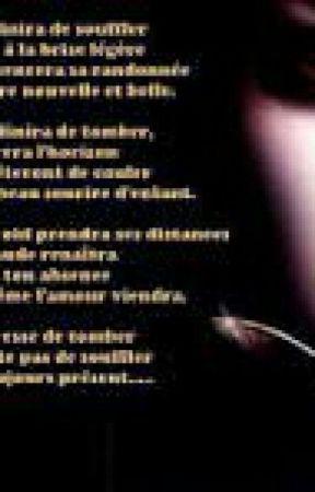 Mes Poeme Prison Fleurie Wattpad
