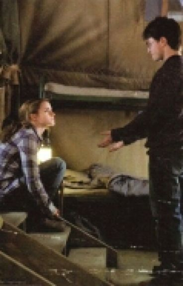 Harry & Hermione: Hechos que indicaban que podrian haber quedado juntos