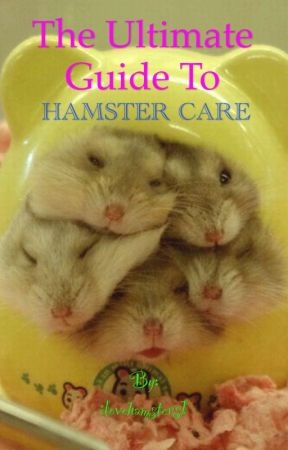 The Ultimate Guide to Hamster Care by TheHamsterPlanet