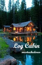 Log Cabin by mustachedoreo