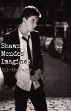 Shawn Mendes Imagines by All-Arounder