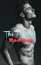 The Perfect Bad Boy by Clara180