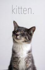 kitten // larry by corgilouis