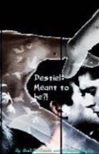 MEANT TO BE?! DESTIEL/SUPERNATURAL FANFIC  #WATTYS2015 by Bre5SOSrocks