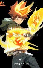 Hidden In Plain Sight (KHR  AU) by Alyzia80